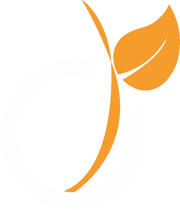 Logo Viadeo - Groupe FG Design